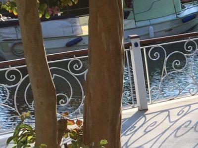 ağva riverangel butik hotel